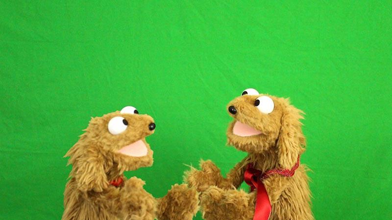Dog hand muppet style puppet